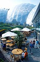 Biodiversity biological project. Large biomes. Restaurant,cafe.
