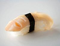 Close up of geoduck sushi, also called nigirizushi.