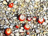 Conkers with smiley faces on the ground
