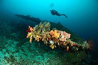 Scuba Diver over Airplane Wreck, Pulau Wai, Raja Ampat, West Papua, Indonesia
