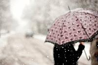 a person uses an umbrella in a snowfall as they walk across the street, victoria british columbia canada