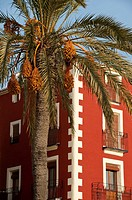 A date palm tree and an apartment building at the old quarter of Villajoyosa City  Alicante province, Valencian Community, Spain, Europa