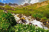 Mountain streams, American Basin, San Juan Mountains range of the Rocky Mountains, Southwest Colorado USA