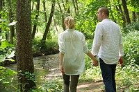 Couple walking in woods, rear view