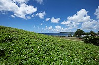 landscape of Agana city, Guam