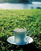 White coffee cup on meadow