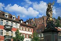 D-Heidelberg, Neckar, Rhine-Neckar area, nature reserve Neckartal-Odenwald, Bergstrasse, Odenwald, Baden-Wuerttemberg, old town, Kornmarkt, market pla...