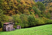 Cabins. Route of El Alba. Redes Natural Park and Biosphere Reserve. Soto de Agues. Sobrescobio Council. Asturias. Spain