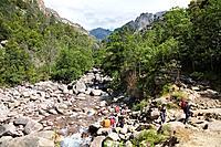 Figarella river, Foret de Bonifatu, Corsica, France, Europe