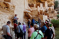Cliff Palace at Mesa Verde National Park, Colorado, USA, North America, America