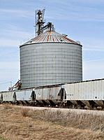 Grain Elevator and Train Cars