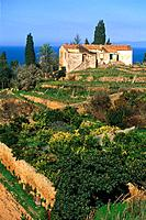 Farmhouse with garden, Monte Argentario, Italy