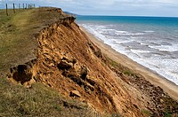 Coastal erosion in the UK  Soft cliff collapsing and falling into the sea