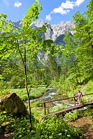 Woman hiking at the Hoellbach im Bluntautal, Berchtesgaden Alps, Austria