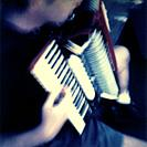Muisican male practising accordian