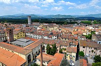 View from Torre Guinigi Tower Lucca Italy Tuscany Europe Mediterranean