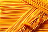 macaroni _ pasta