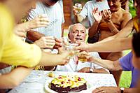Family Toasting Senior Man´s Birthday