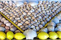 Display of cockles and mussels, with lemons at a fish restaurant