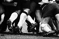Rugby Players in a Scrum