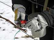 worker in a winterly yineyard, Germany, Rhineland_Palatinate, Siebeldingen
