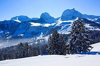 view from Gurnigel at the Pre_Alps on Chrumfadeflue 2079 m, Nuenenen 2101 m, Gantrisch 2175 m und Buerglen 2165 m at the Bernese Alps, Switzerland