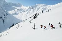Skiers, Skeena Mountain Range, British Columbia, Canada.