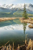 Talbot Lake, Jasper National Park, Alberta, Canada.