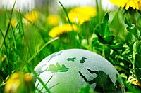 glass globe or earth in grass