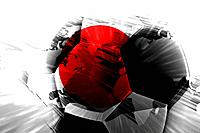 Flag of Japan soccer