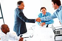 Business colleagues standing and shaking hands during meeting
