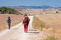 pilgrims on the way from Luquin to Los Arcos, Spain, Basque country, Navarra