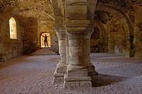 Ruins of Santa Maria de Moreruela Cistercian monastery (12th century), Granja de Moreruela, Zamora province, Castilla-Leon, Spain