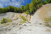 chalk rocks in Jasmund National Park, Germany, Mecklenburg_Western Pomerania, Ruegen, Jasmund National Park