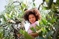 Girl climbing tree (thumbnail)