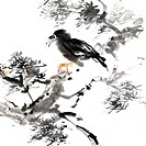 Chinese painting of bird