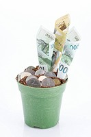 rolled money bills and coins in flower pot