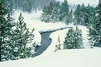 Stream Through Snowy Forest