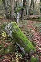 santa cecilia archeological area, bomarzo, lazio, italia