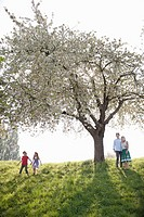 Family playing under tree in park (thumbnail)