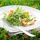 Rocket,Dublin Bay prawn,pine nut and parmesan salad