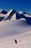 Skier in a Mountain Range