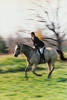 Fox Hunter on Horse