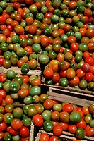 Green and red tomatoes lay in crates at a market in Colombia.