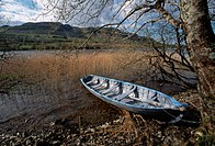 Boat at the edge of Glencar Lake about which W.B.Yeats wrote: I wander by the edge _ Of this desolate lake _ Where the wind cries in the sedge in He H...