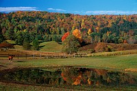 Rural New England Farm in Autumn
