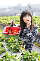Girl in the strawberry field