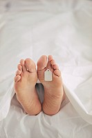 Deceased Person´s Feet with Tag