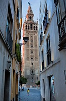 Cathedral,Giralda tower from Placentines street,Sevilla,Andalucía,Spain