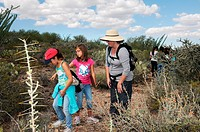 Elementary school students study the Sonoran Desert in Tucson, Arizona, USA .